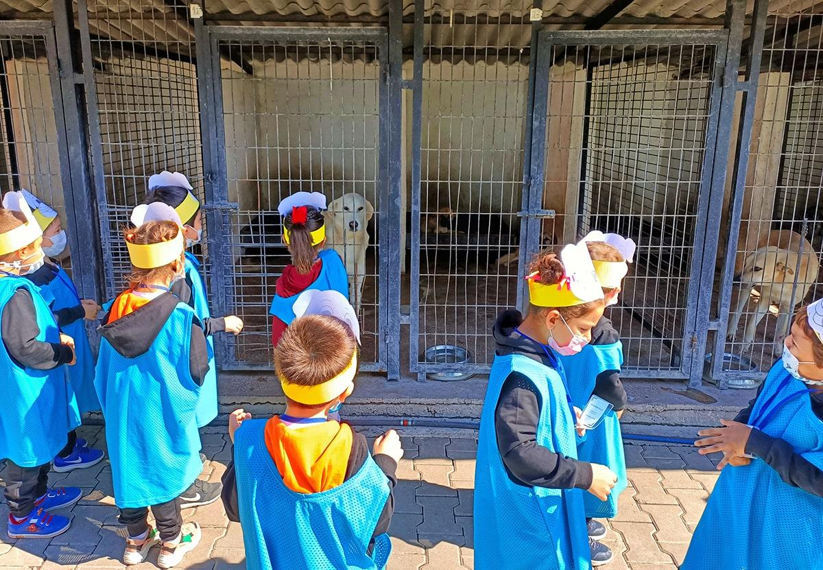 Etkin Kolej   Hayvanları Koruma Günü Etkinliği