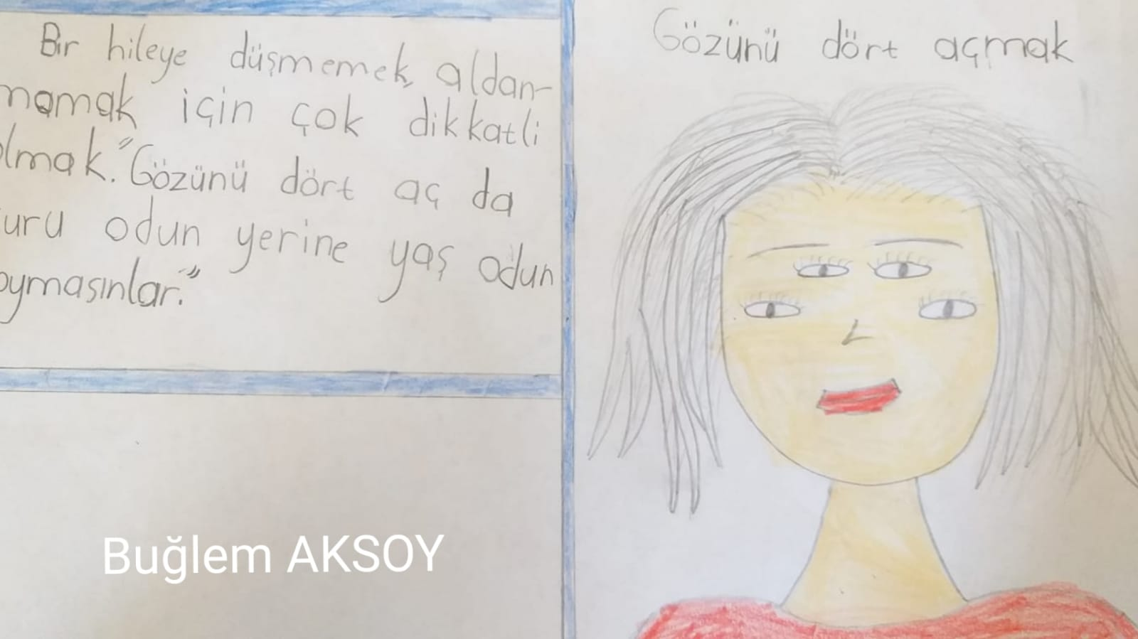 Etkin Kolej | RESMET SEYRET!